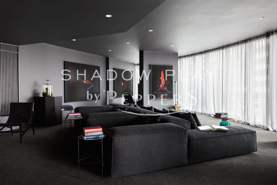 Living area with charcoal couch