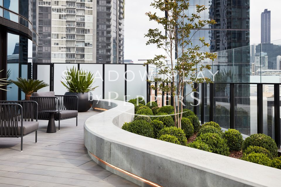 Outdoor area with plants and chairs